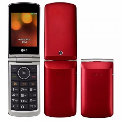 https://loja.ctmd.eng.br/20465-thickbox/celular-flip-lg-fm-mp3-mp4-2-chips-bluetooth-cam-13-mpx-.jpg